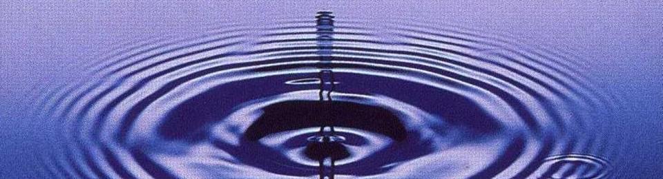 Homéopathie…ou la puissance infinie de l'infiniment petit…
